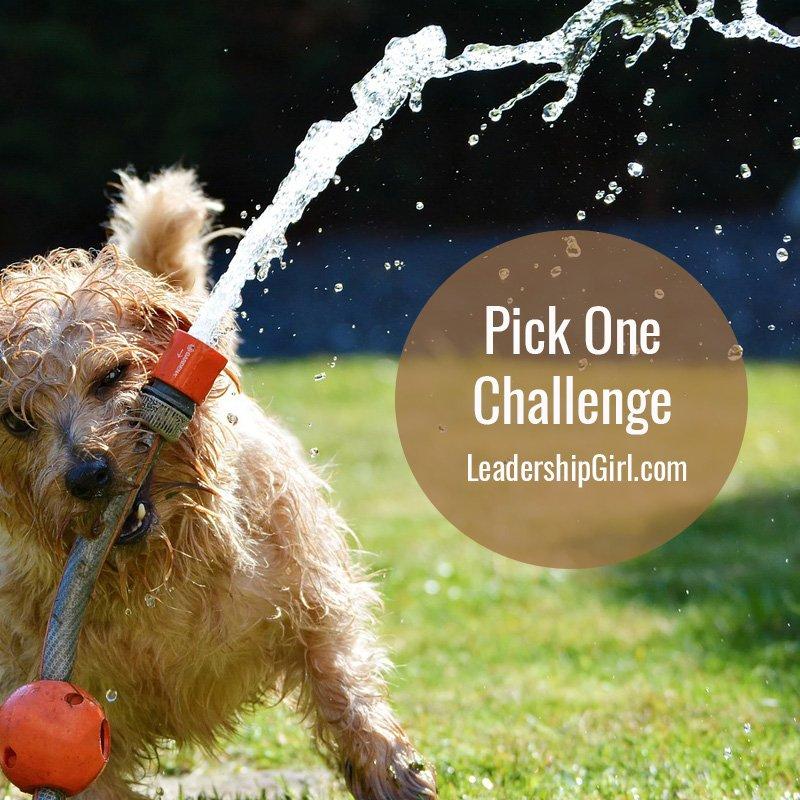 Pick One Challenge