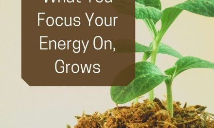 What You Focus Your Energy On, Grows