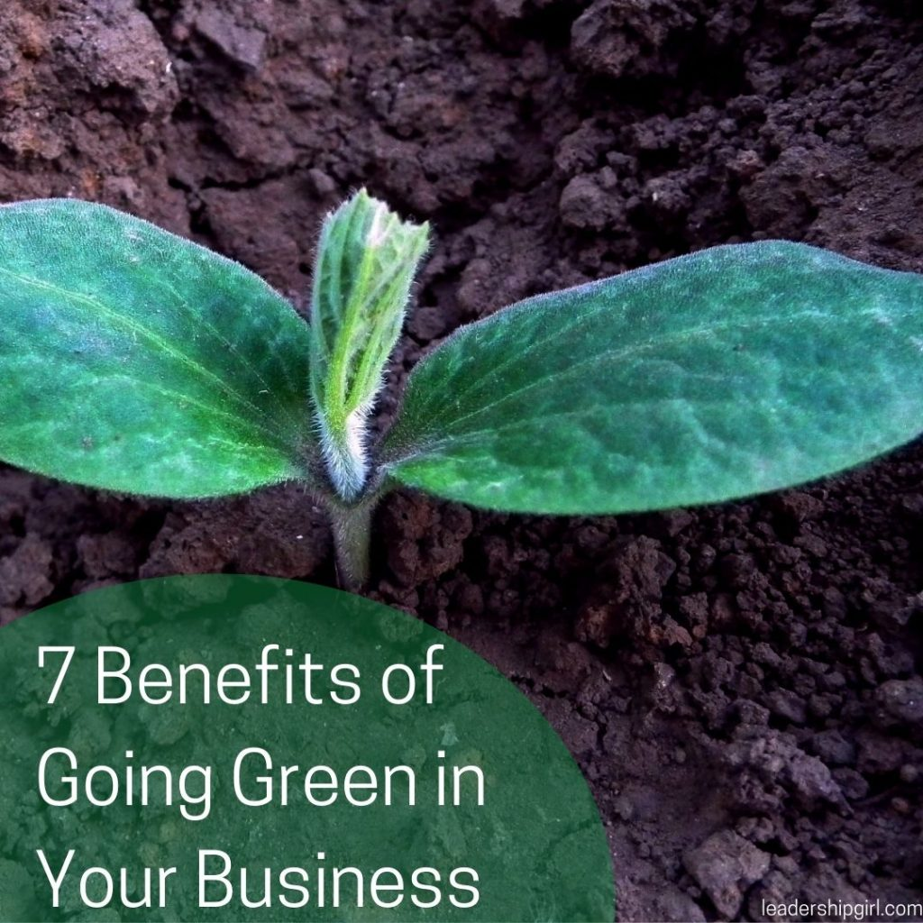 """7 Benefits of Going Green in Your Business"" Seedling"