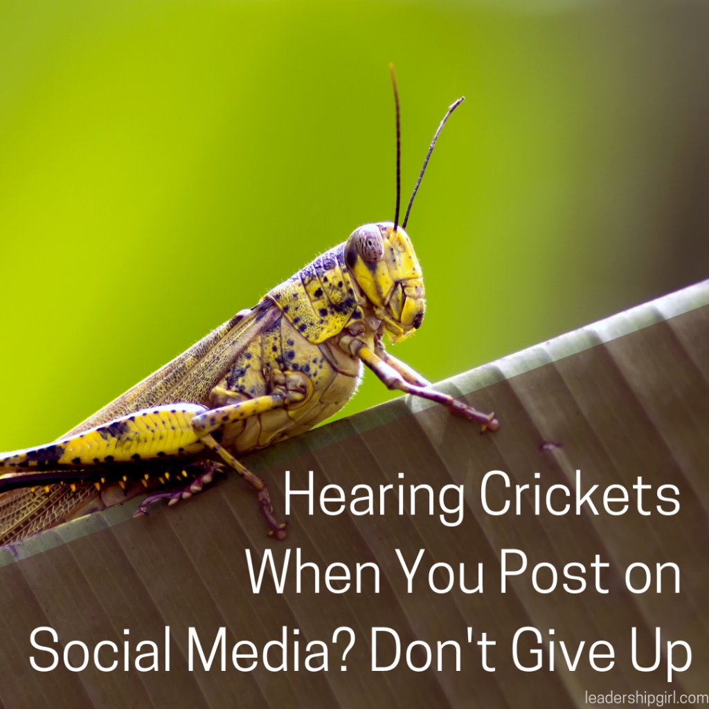 """Hearing Crickets When You Post on Social Media? Don't Give Up"" Cricket"