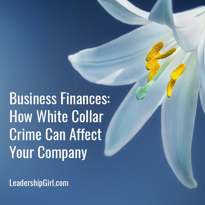 """Business Finances: How White Collar Crime Can Affect Your Company"" White Lily"