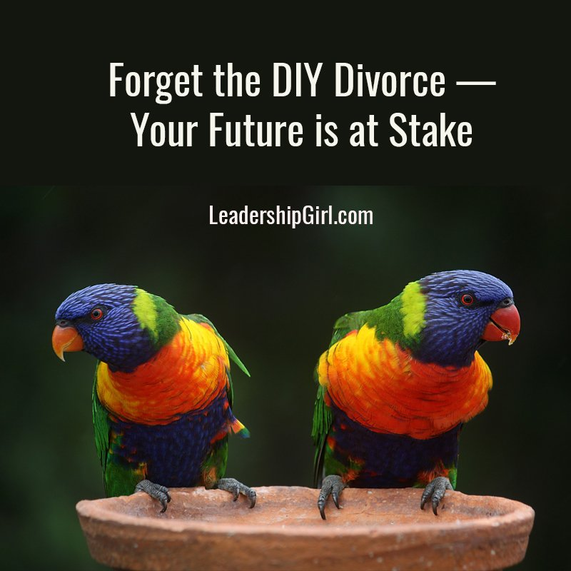 Forget the DIY Divorce — Your Future is at Stake