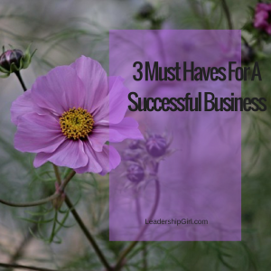 3 Must Haves for a Successful business