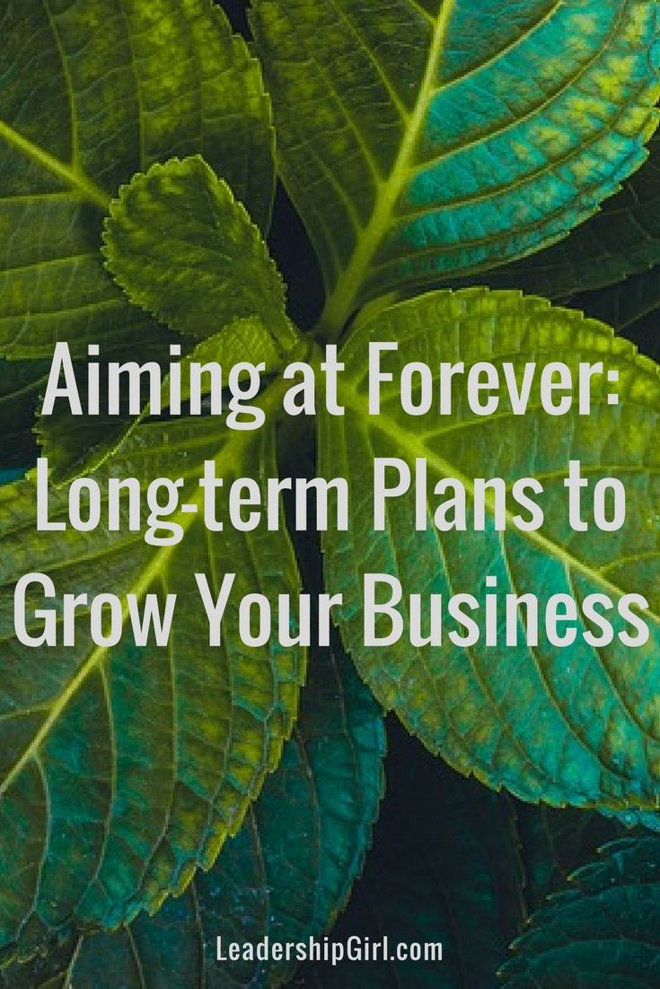 Aiming at Forever: Long-term Plans to Grow Your Business