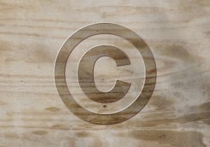 Brand Protection Fundamentals: Trademarks 2