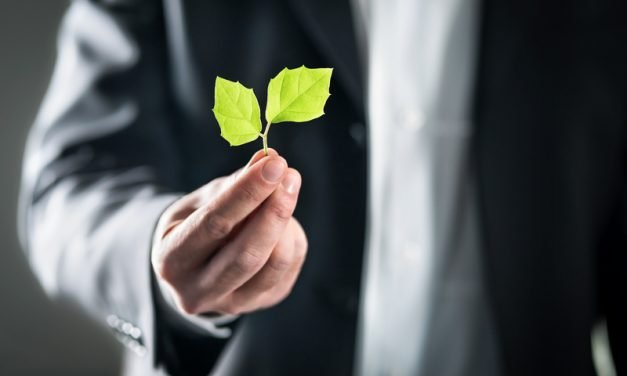 How Your Business Can Take the Lead in Sustainability